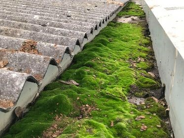 Gutter Cleaning And Maintenance Advice